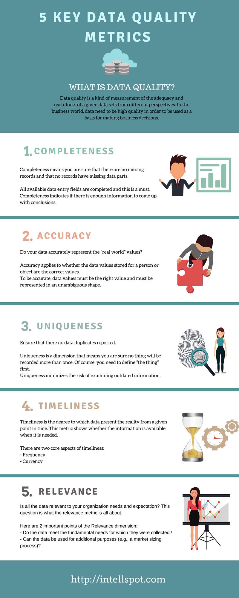 Data Quality Metrics Infographic