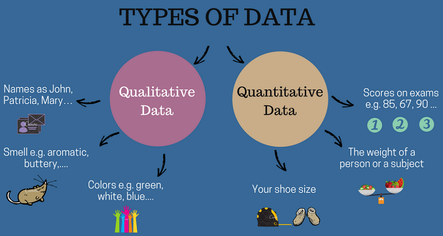 Difference between qualitative and quantitative data (with.