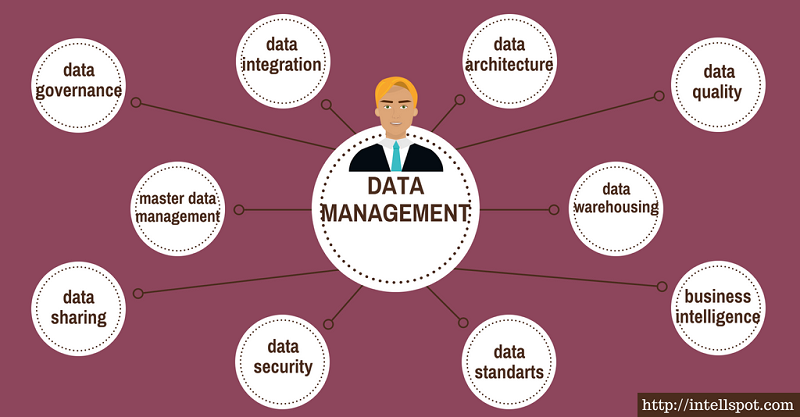 data management categories and topics - infographic