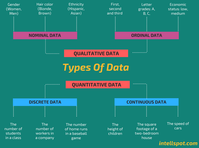 Types of Data - Infographic