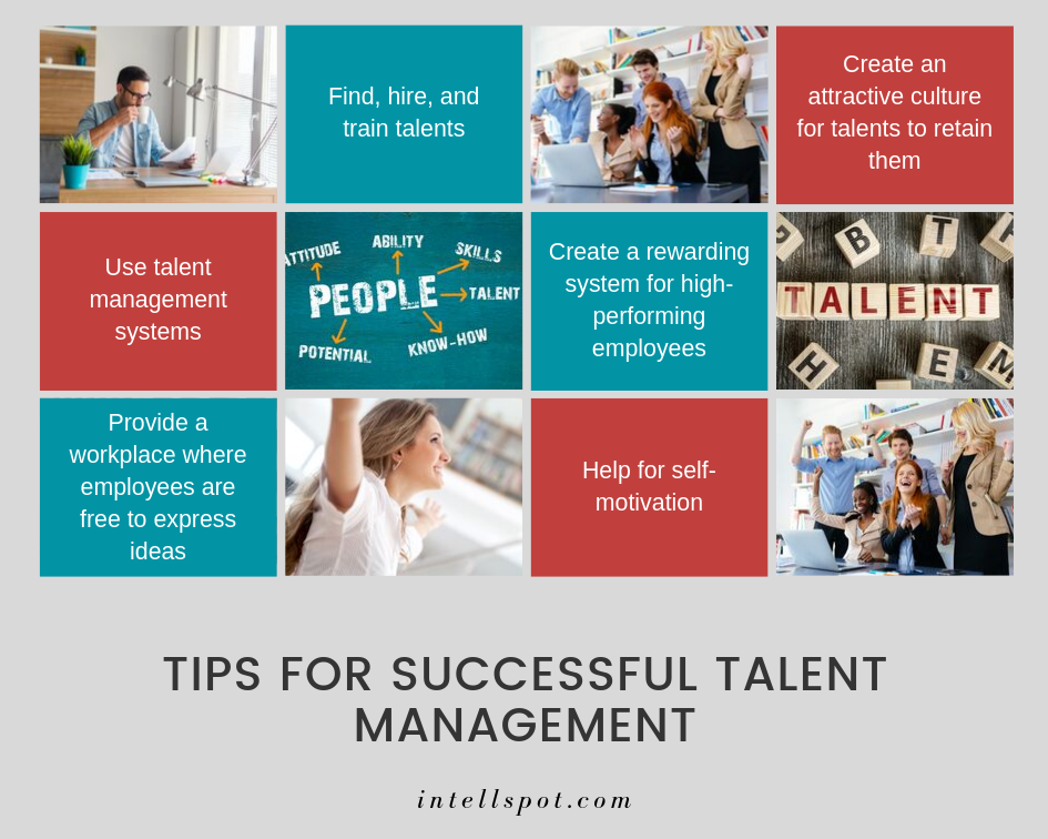 Tips For SUCCESSFUL Talent Management - infographic