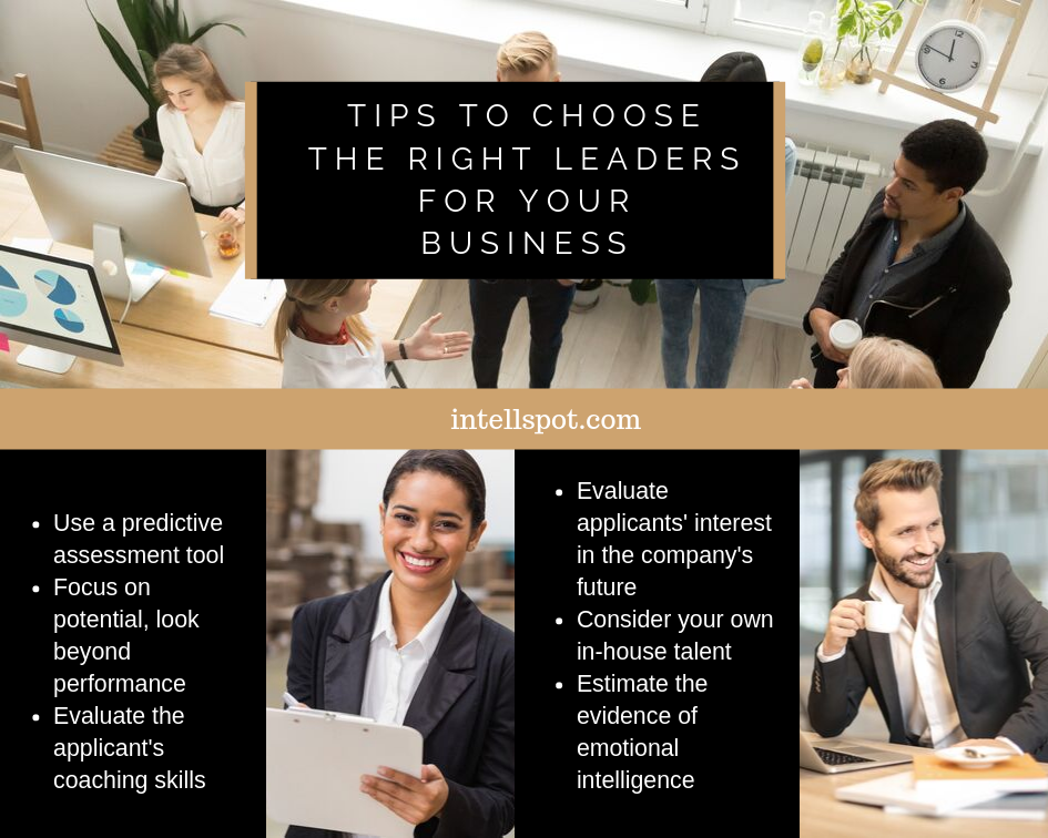 Tips To Choose The Right Leaders For Your Business - infographic