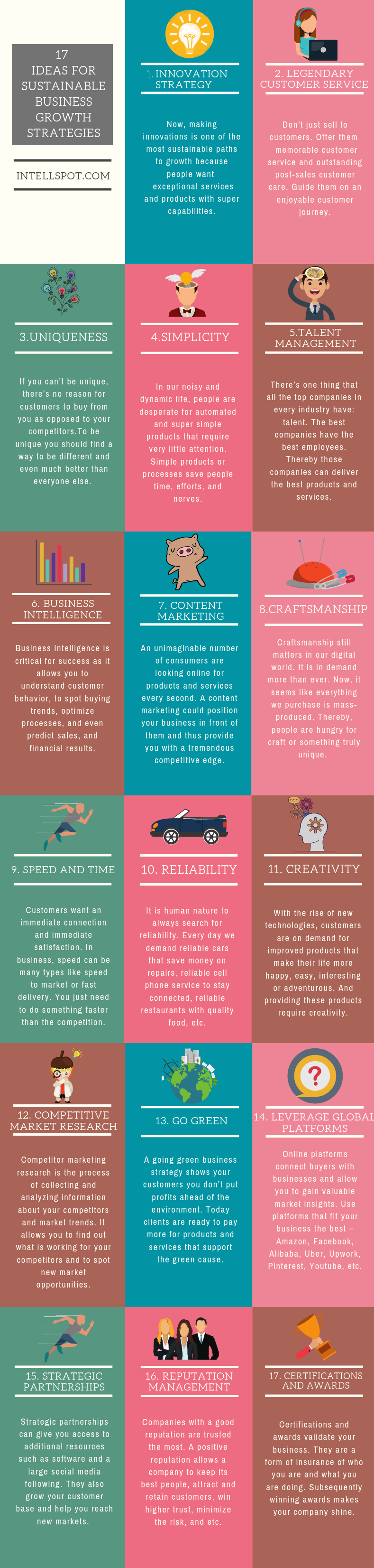 ideas for Sustainable Business Growth Strategies - an infographic
